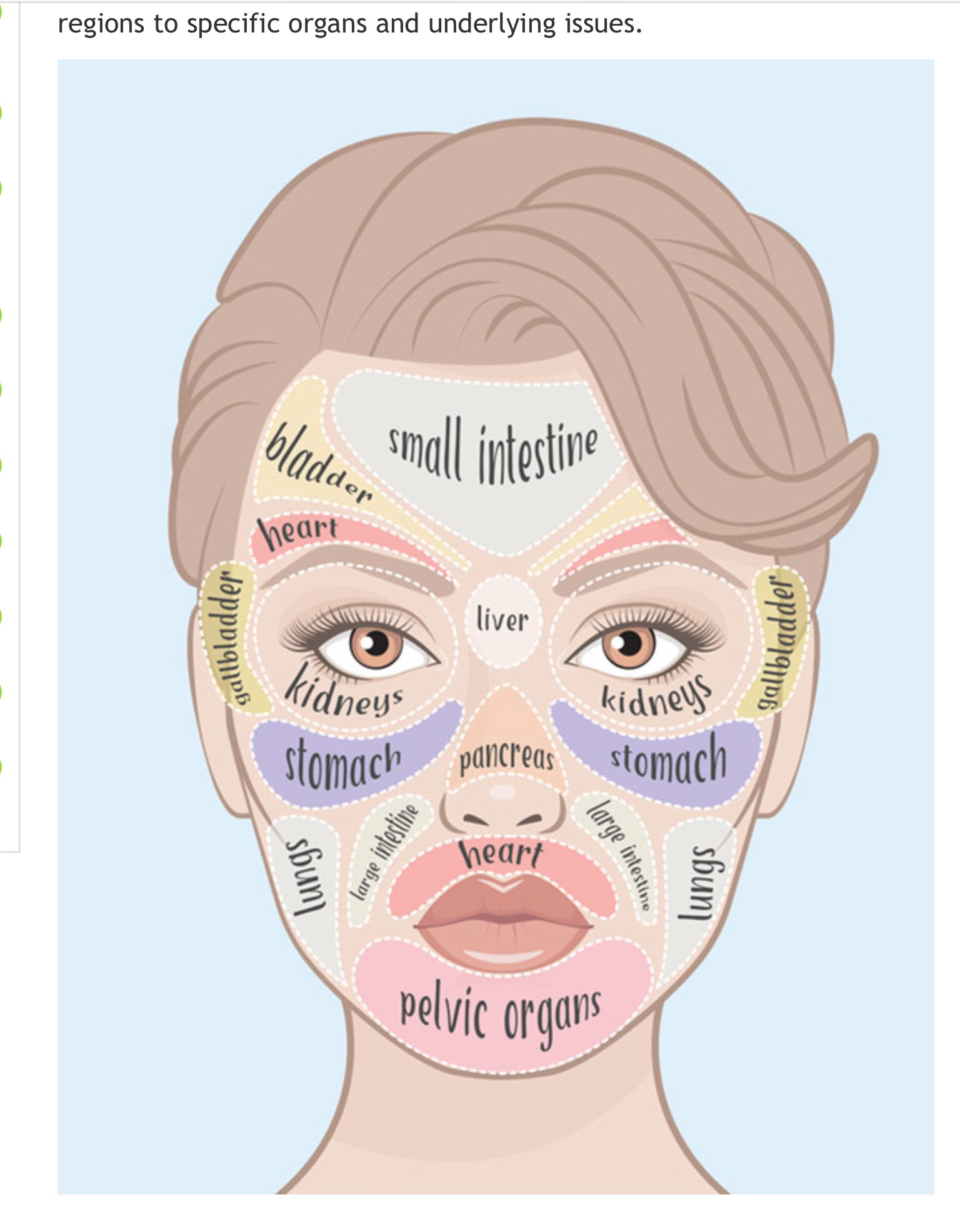 Acne Face Mapping French Spa - Chinese face map for acne
